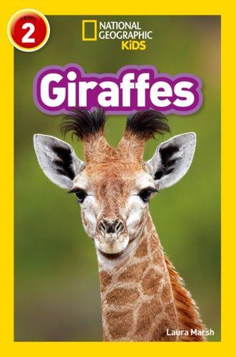 9780008266639 Giraffes