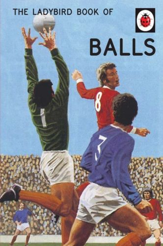 9780718188719 Ladybird Book of Balls