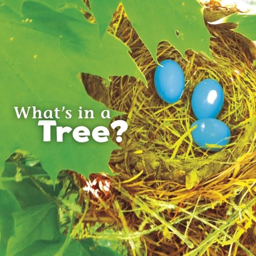 9781474706063 What's in a Tree?