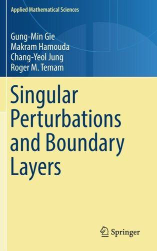 9783030006372 Singular Perturbations and Boundary Layers