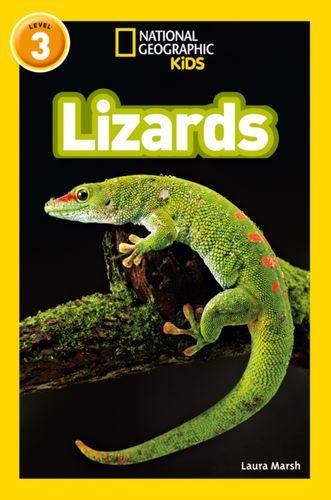 9780008266738 Lizards