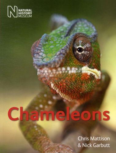 9780565092900 Chameleons