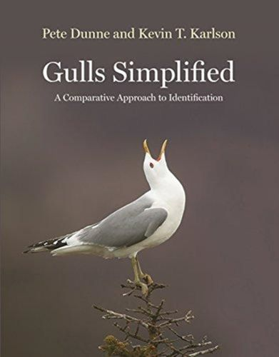 9780691156941 Gulls Simplified