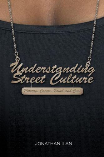9781137028587 Understanding Street Culture