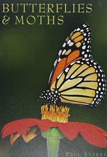 9781422239568 Butterflies & Moths