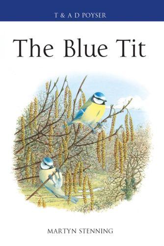 9781472937384 Blue Tit