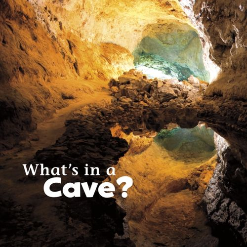9781474706070 What's in a Cave?