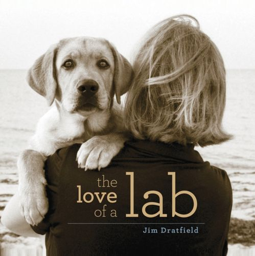 9781493038954 Love of a Lab