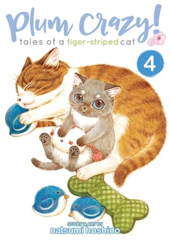9781626926783 Plum Crazy! Tales of a Tiger-Striped Cat Vol. 4