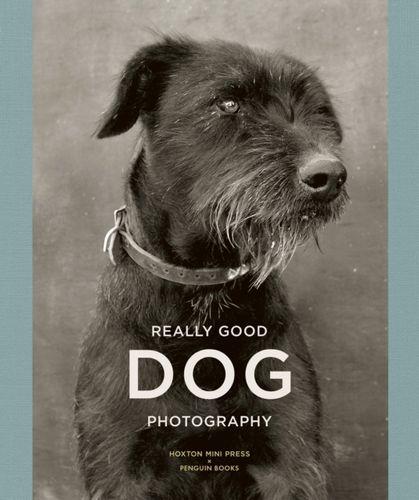 9781846149429 Really Good Dog Photography